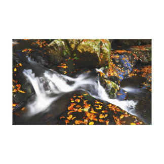 Cascade in Autumn Canvas Print