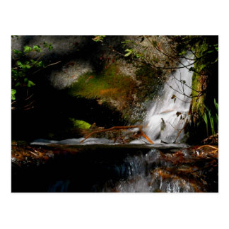 CASCADE. POOL. FALLS. Meditation-a way of looking Postcard