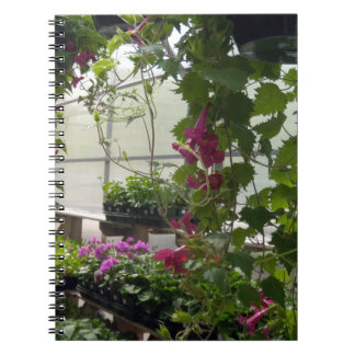 Cascading Red Lofus Blooms Spiral Notebook