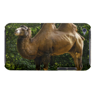 Case Barely There iPod Case