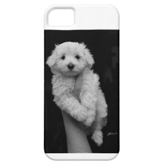 Case-Mate Barely There iPhone 5/5S Case Maltese