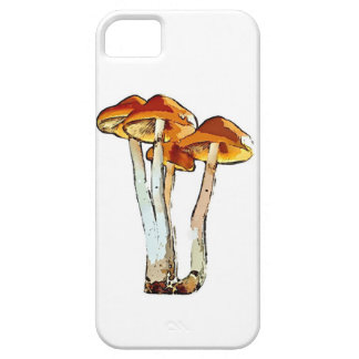 Case-Mate Barely There iPhone SE + iPhone 5/5S Cas Case For The iPhone 5