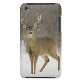 Case-Mate iPod Touch, Magnificent Snow Deer Barely There iPod Covers