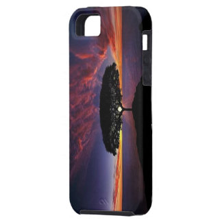 Case-Mate Vibe iPhone 5 Case, Ivalo's Spectacular Tough iPhone 5 Case