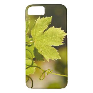 Case: Mediterranean Grape Vine iPhone 7 Case