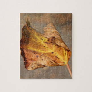 case of leaves jigsaw puzzle