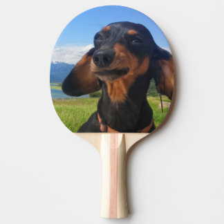 Cash me outside ping pong paddle