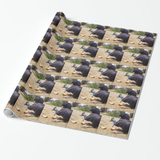 Cassowary Bird Eating Melons, Wrapping Paper