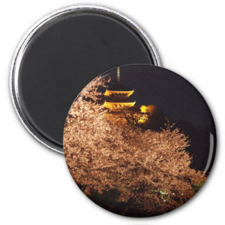 Castle and cherry blossoms in Japan at night Magnets