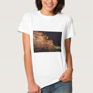 Castle and cherry blossoms in Japan at night Tshirt