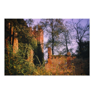Castle Tower Fort Moat Vintage Fortress Forest Poster