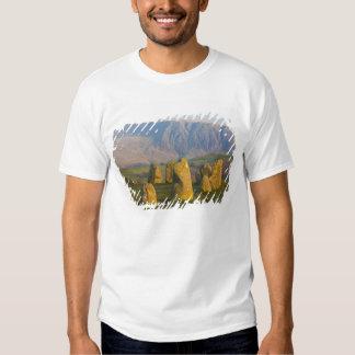 Castlerigg Stone Circle, Lake District, Cumbria, T-shirt