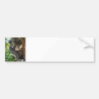 Casual Koala  Bumper Sticker Car Bumper Sticker