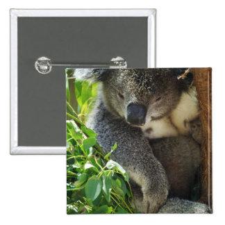 Casual Koala  Button
