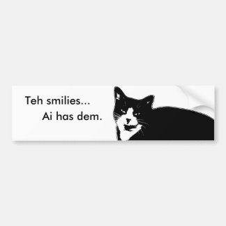 Cat2 Bumper Sticker