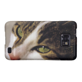 cat 2 galaxy SII cases