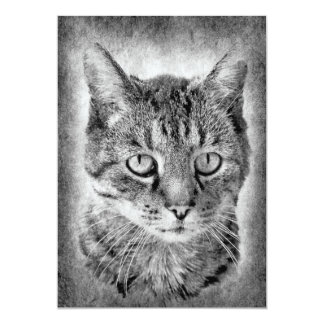 "cat-315001 cat domestic cat black white proud brav 5"" x 7"" invitation card"