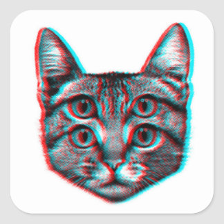 Cat 3d,3d cat,black and white cat square sticker