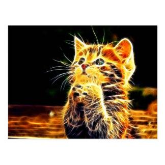 Cat 3d artworks postcard