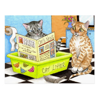 cat 464 postcard
