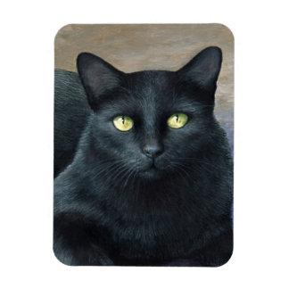 Cat 621 magnet
