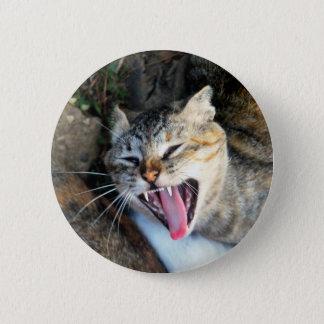 Cat 6 Cm Round Badge