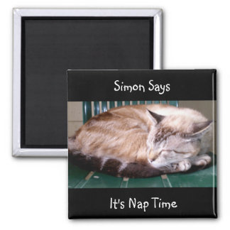 Cat 7, It's Nap Time, Simon Says, Magnet