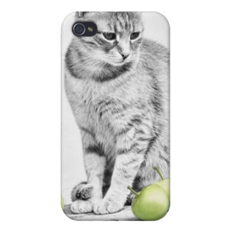 Cat and Apples iPhone 4 Cover