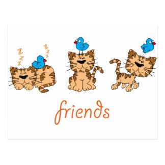 Cat and Bird - friends Postcard