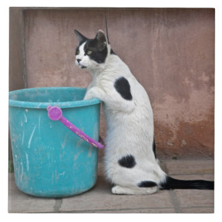 Cat and bucket, Chania, Crete, Greece Large Square Tile
