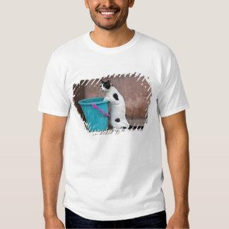 Cat and bucket, Chania, Crete, Greece T-shirt