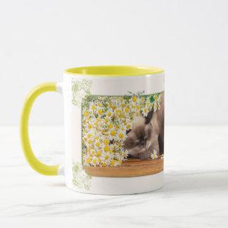 Cat and daisies mug