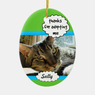 Cat and Dog Adoption Photo Family Pet Ornament
