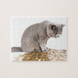 Cat and dog humor jigsaw puzzle