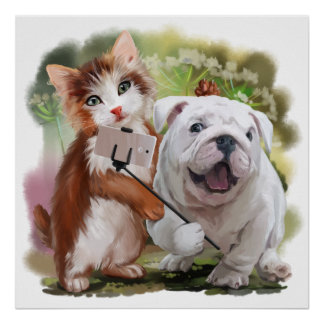 Cat and dog pose for a selfie poster