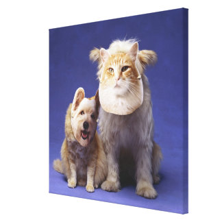 Cat and dog with masks stretched canvas print