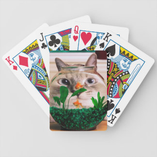 Cat and fish - cat - funny cats - crazy cat bicycle playing cards