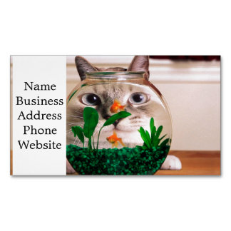 Cat and fish - cat - funny cats - crazy cat 	Magnetic business card