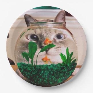 Cat and fish - cat - funny cats - crazy cat paper plate