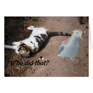 Cat and Gull card