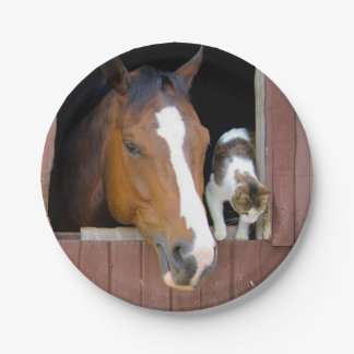 Cat and horse - horse ranch - horse lovers paper plate