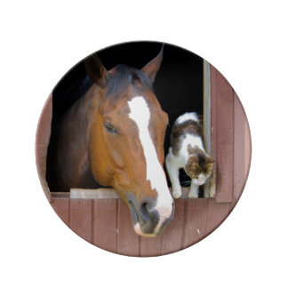 Cat and horse - horse ranch - horse lovers plate