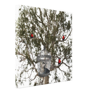 Cat And Lorikeet Role Reversal, Canvas Print