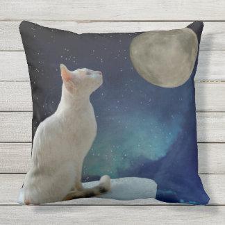 Cat and Moon Cushion