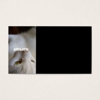 cat ARIGATO Business Card