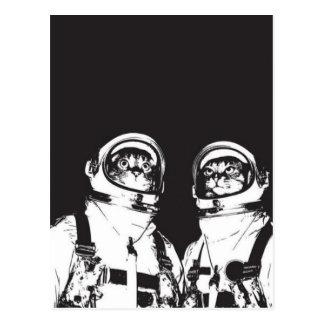cat astronaut - black and white cat - cat memes postcard