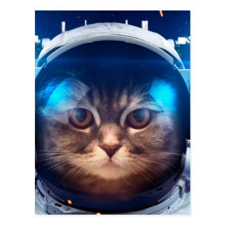 Cat astronaut - cats in space  - cat space postcard