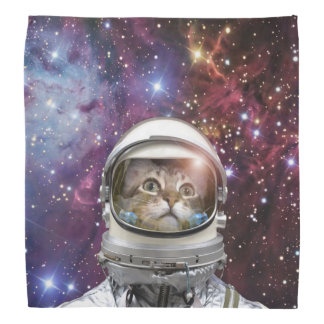 Cat astronaut - crazy cat - cat bandana