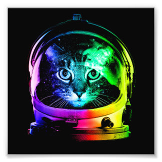 Cat astronaut - space cat - funny cats photo print