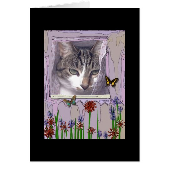 Cat at Window Card